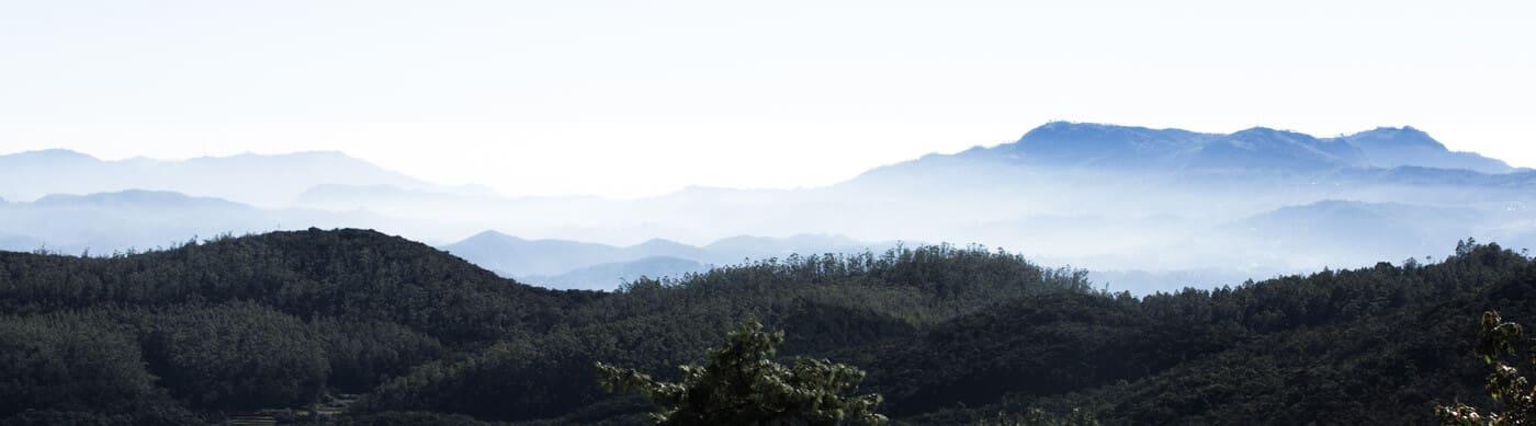 Cuurate - Kunckles Mountain Range